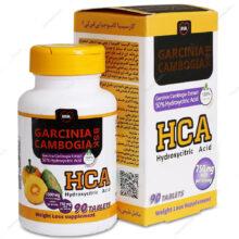 قرص گارسینیا کامبوجیا GARCINIA CAMBOGIA بی اس کی 90 عددی