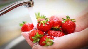 روش استفاده از محلول ضد عفونی کننده میوه و سبزیجات
